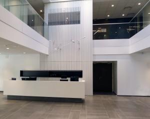 guillaume-da-silva-architecture-interieure-lille-roubaix-nord-apave-carre-constructeur-accueil